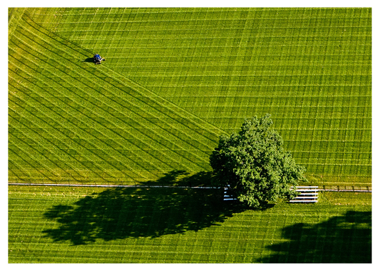 """Morning Mow"" by Scott Soderberg, University of Michigan."